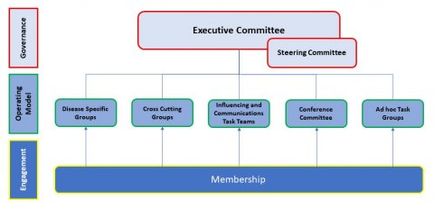 NNN Governance structure