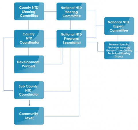 Figure 1. Structure for implementing the BTS, adapted from the Kenya National BTS (page 46).